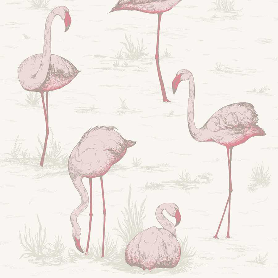 Cole And Son The Contemporary Collection Flamingos 95 8045