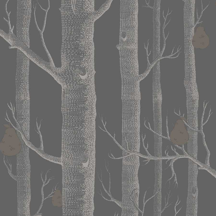 Cole And Son Woods cole and son the contemporary collection woods & pears 95/5031 wallpaper