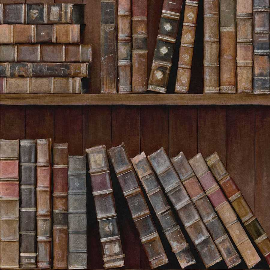 Mindthegap Book Shelves Wallpaper